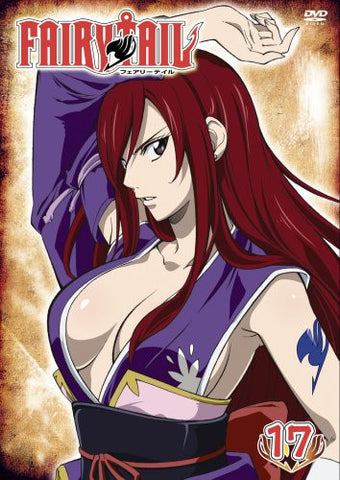 Image for Fairy Tail Vol.17