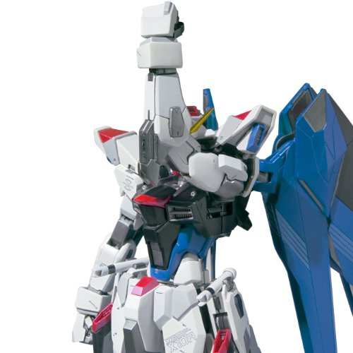 Image 6 for Kidou Senshi Gundam SEED - ZGMF-X10A Freedom Gundam - Metal Build - 1/100 (Bandai)