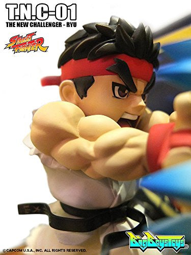 Image 5 for Street Fighter - Ryu - T.N.C 01 (Big Boys Toys)