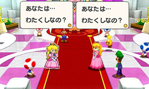 Image 12 for Mario & Luigi RPG Paper Mario Mix