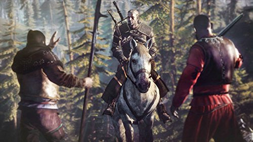 Image 3 for The Witcher 3: Wild Hunt