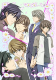 Thumbnail 1 for Junjo Romantica Vol.6 [Limited Edition]