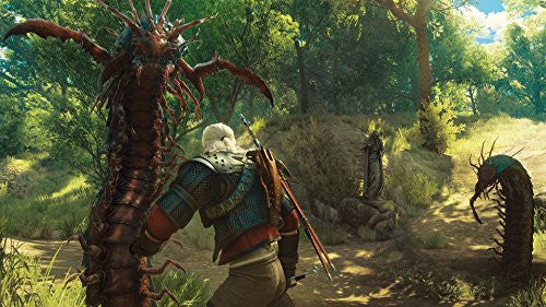 Image 5 for The Witcher 3: Wild Hunt [Game of the Year Edition]