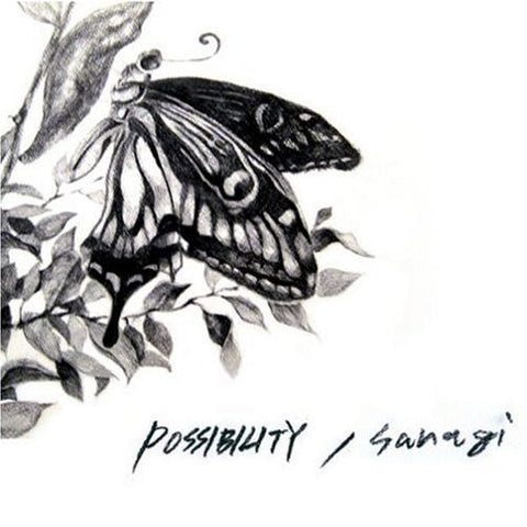 Image for sanagi / POSSIBILITY