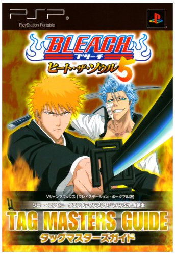 Image 1 for Bleach: Heat The Soul 5 Tag Masters Guide