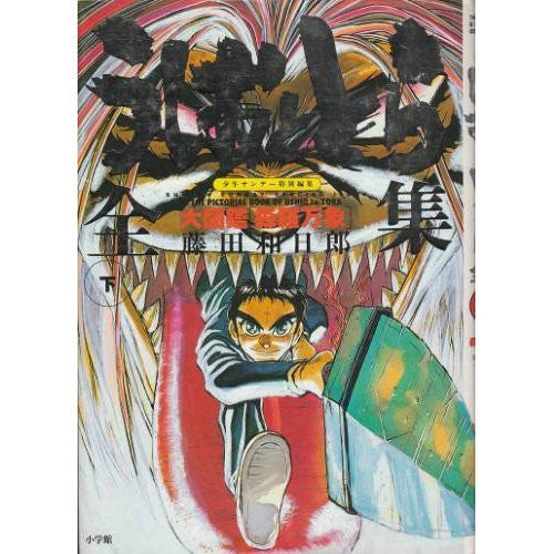Image 1 for Ushio And Tora Zenshu Gekan Daizukan Shinrabansho Encyclopedia Art Book