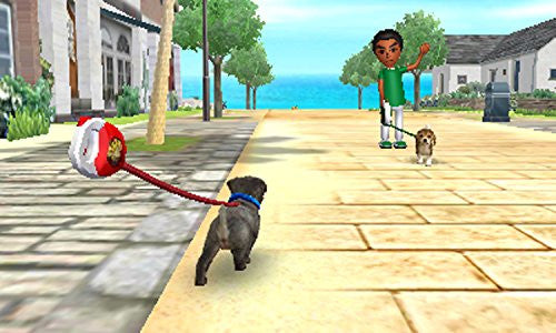 Image 6 for Nintendogs + Cats: Toy Poodle & New Friends (Happy Price Selection)