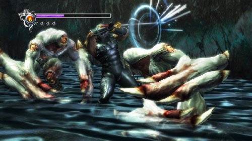 Image 3 for Ninja Gaiden Sigma (PlayStation3 the Best) [New Price Version]