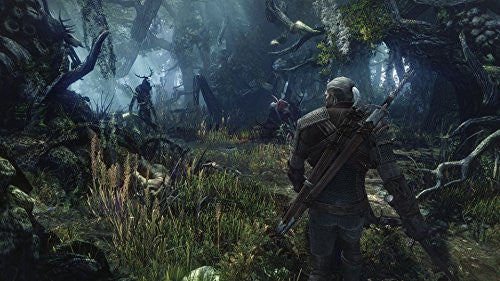 Image 7 for The Witcher 3: Wild Hunt