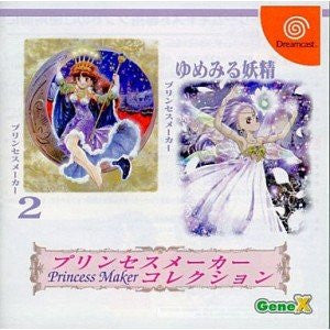 Image 1 for Princess Maker Collection