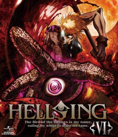 Image for Hellsing VI