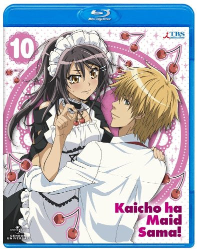 Image 2 for Maid Sama! 10