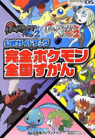 Image for Pokemon Black 2 & White 2 Perfect Formula Guide Book