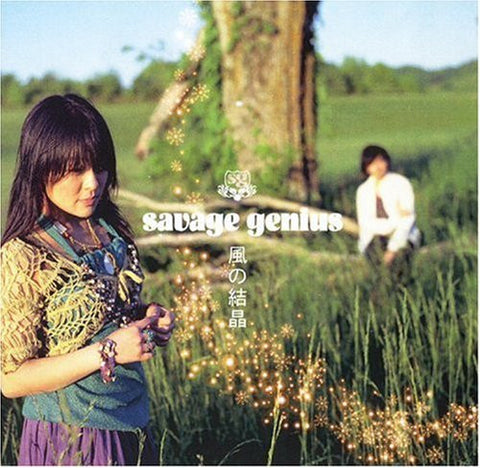 Image for Kaze no Kesshou / savage genius