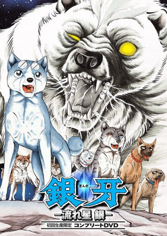 Image for Ginga - Nagare Boshi Gin Complete DVD [Limited Edition]