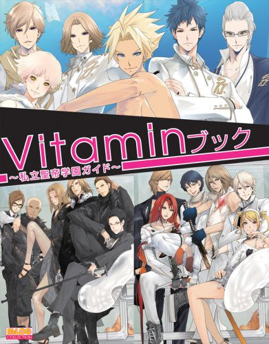 Image 1 for Vitamin Book Shiritsu Seitei Gakuen Guide Book / Ps2