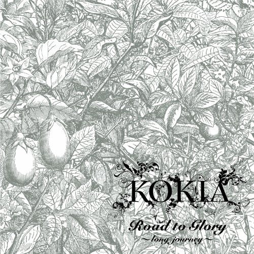 Image 1 for Road to Glory ~long journey~ / KOKIA