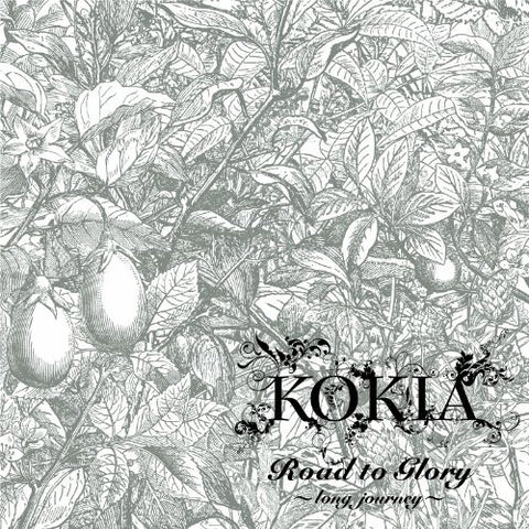 Image for Road to Glory ~long journey~ / KOKIA