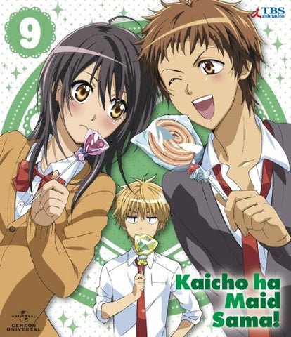 Image for Maid Sama! 9