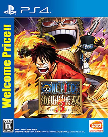 Image for One Piece: Kaizoku Musou 3 (Welcome Price!!)