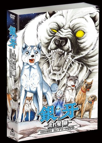 Image 2 for Ginga - Nagare Boshi Gin Complete DVD [Limited Edition]