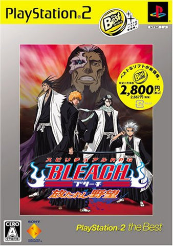 Image for Bleach: Hanatareshi Yabou (PlayStation2 the Best)
