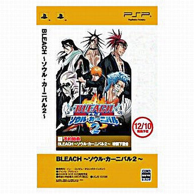 Image for Bleach: Soul Carnival 2