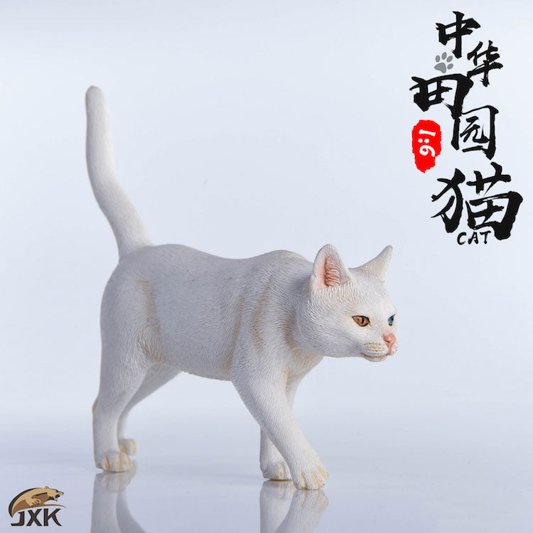 1/6 Chinese Cat B(Provisional Pre-order)
