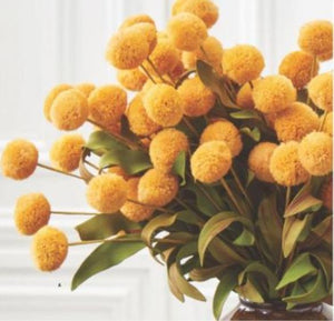Yellow Pompom Pick w/Green Eva Leaves Bundle (6 Stems)