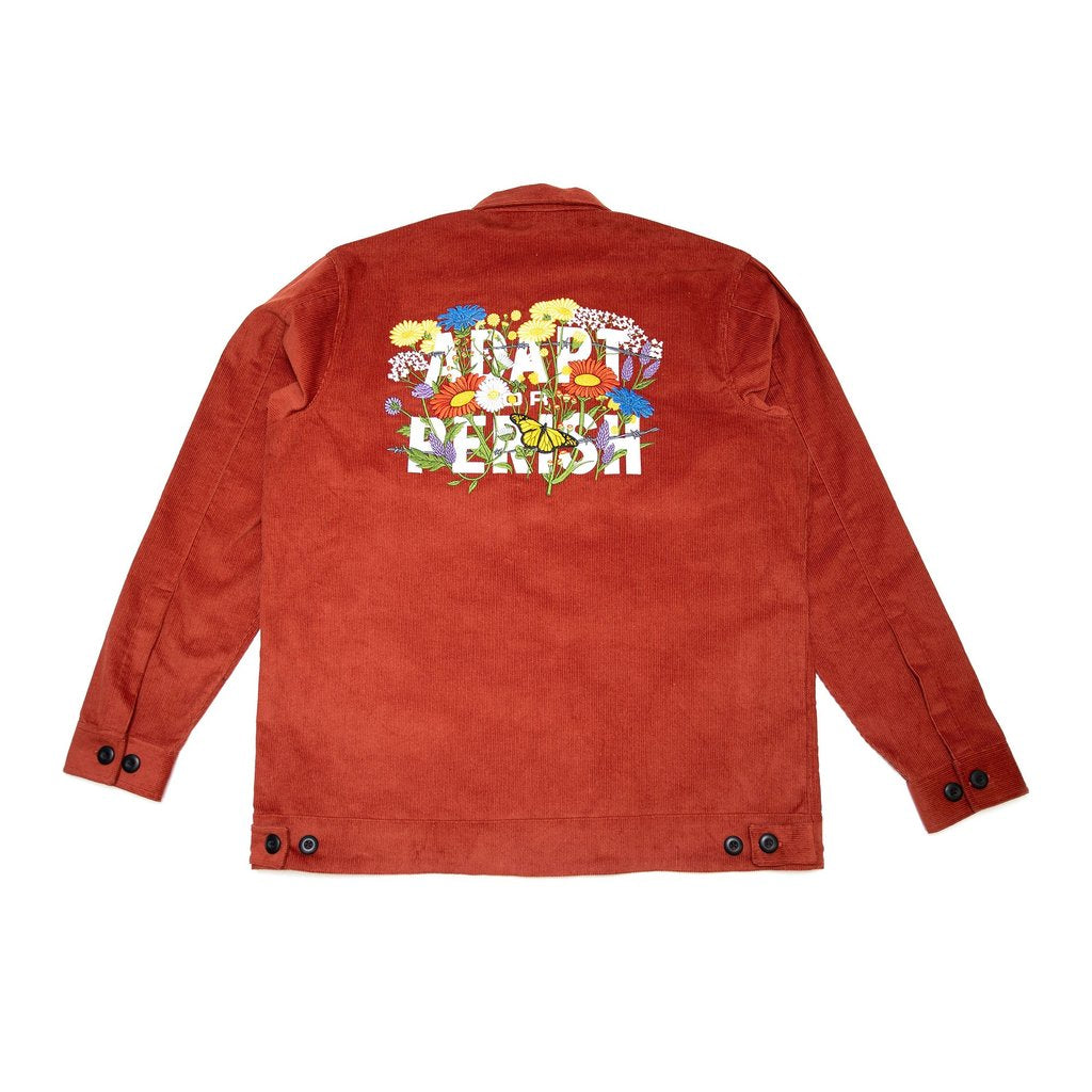 RBW Adapt Or Perish Corduroy Blouson Jacket (Rust)