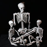 90cm Scary Poseable Human Skeleton