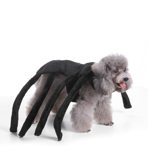 Pet Black Widow Spider Harness Costume