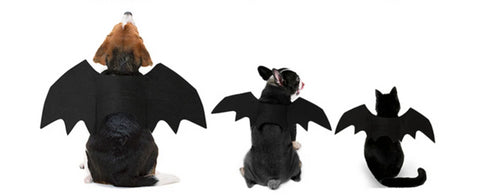 Halloween Cat Bat Wings Collar Harness Decor Puppy Pet Cat Black Bat Dress Up Funny Wing Cat Clothes