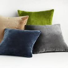 Load image into Gallery viewer, PILLOWS Velvet