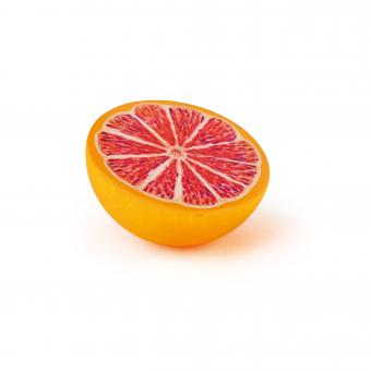 [ETA March] Grapefruit, Half fruit *NEW 2021* - Toydler