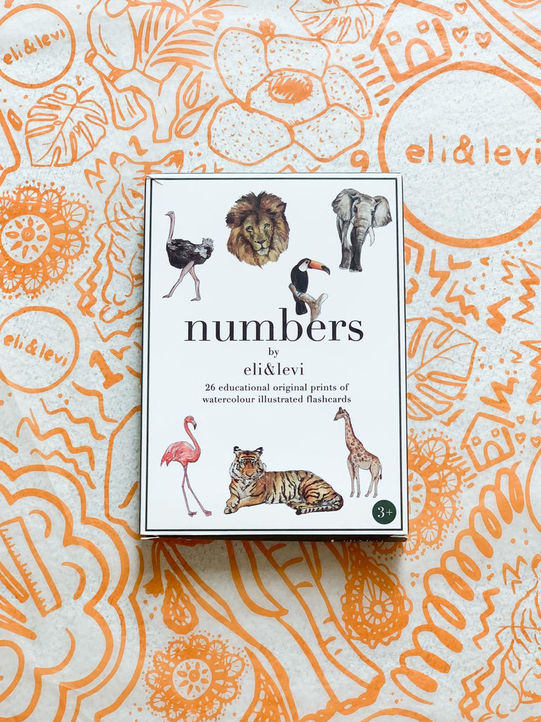 Eli&Levi Numbers Flashcard - Toydler