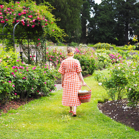 Me-Looking-For-The-Perfect-Picnic-Spot-In-The-Rose-Garden