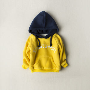 Boys thick hooded sweatshirt - shopbabyitems