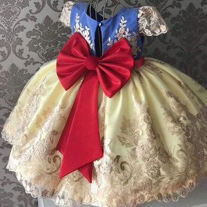 Baby Girl Dresses Lace Embroidery Christmas Dress Wedding Gown Children Clothing Kids Dresses - shopbabyitems