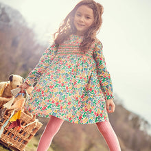Load image into Gallery viewer, Little maven 2-7Years Baby Girl Fancy Dress For Autumn New Children's Girl's Long Sleeve Floral Print Beautiful Princess Dress - shopbabyitems