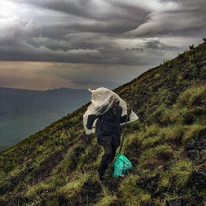 A porter on Mt Nyiragongo.  Photographer: Michael Christopher Brown