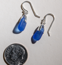Load image into Gallery viewer, Rare cobalt blue sea glass earrings with sterling settings and sterling ear wires. Small size