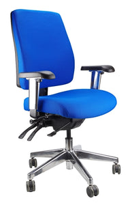 Buy quality Ergoform Ergonomic Office Desk Chair now with FREE SHIPPING blue with polished base and armrests