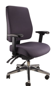 Buy quality Ergoform Ergonomic Office Desk Chair now with FREE SHIPPING charcoal with polished base and armrests