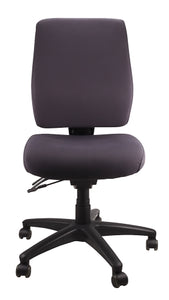Buy quality Ergoform Ergonomic Office Desk Chair now with FREE SHIPPING charcoal with black base