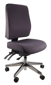 Buy quality Ergoform Ergonomic Office Desk Chair now with FREE SHIPPING charcoal with polished base