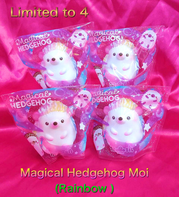 Magical hedgehog Moi