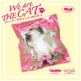 We are THE CAT
