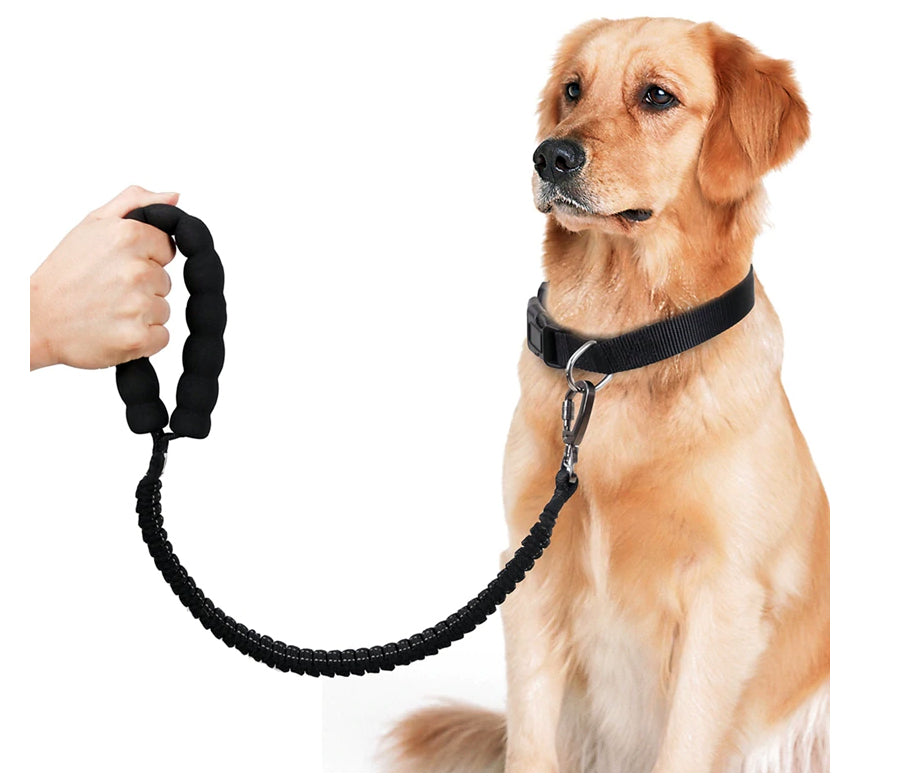 Nylon Round Rope Short Leash2
