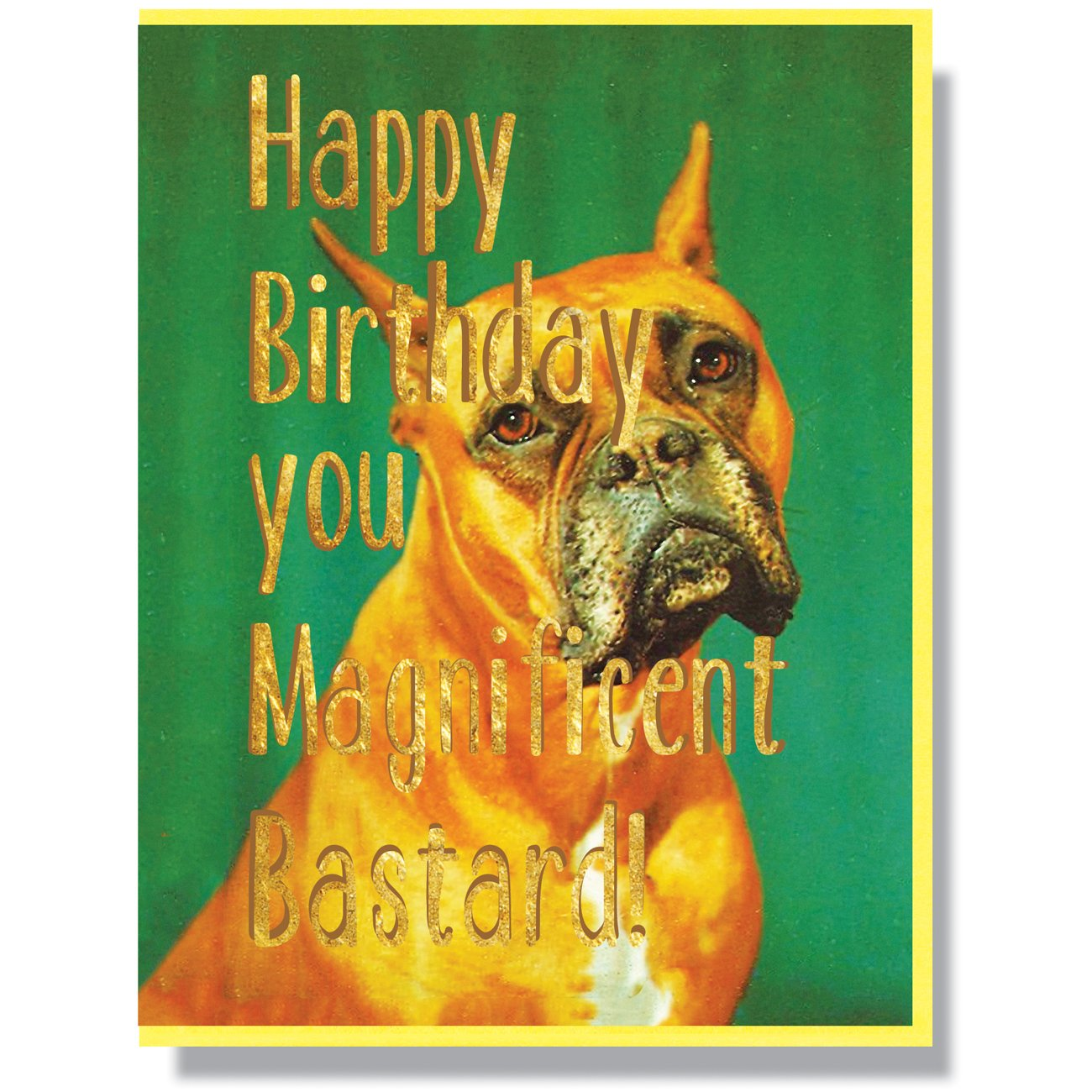 Happy Birthday Magnificent Bastard Card
